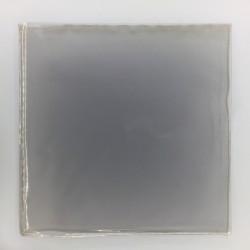 30 Laserdisc protective...